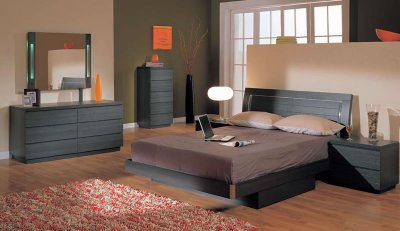 Ash Finish Modern 5pc Bedroom Set W Queen Size Storage Bed
